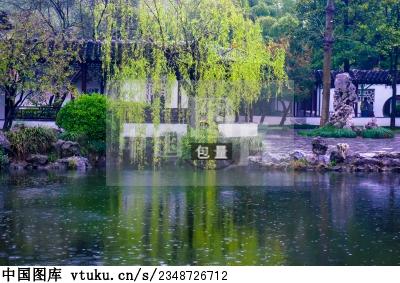 南京秦淮夫子庙瞻园 春天雨中风景 图片